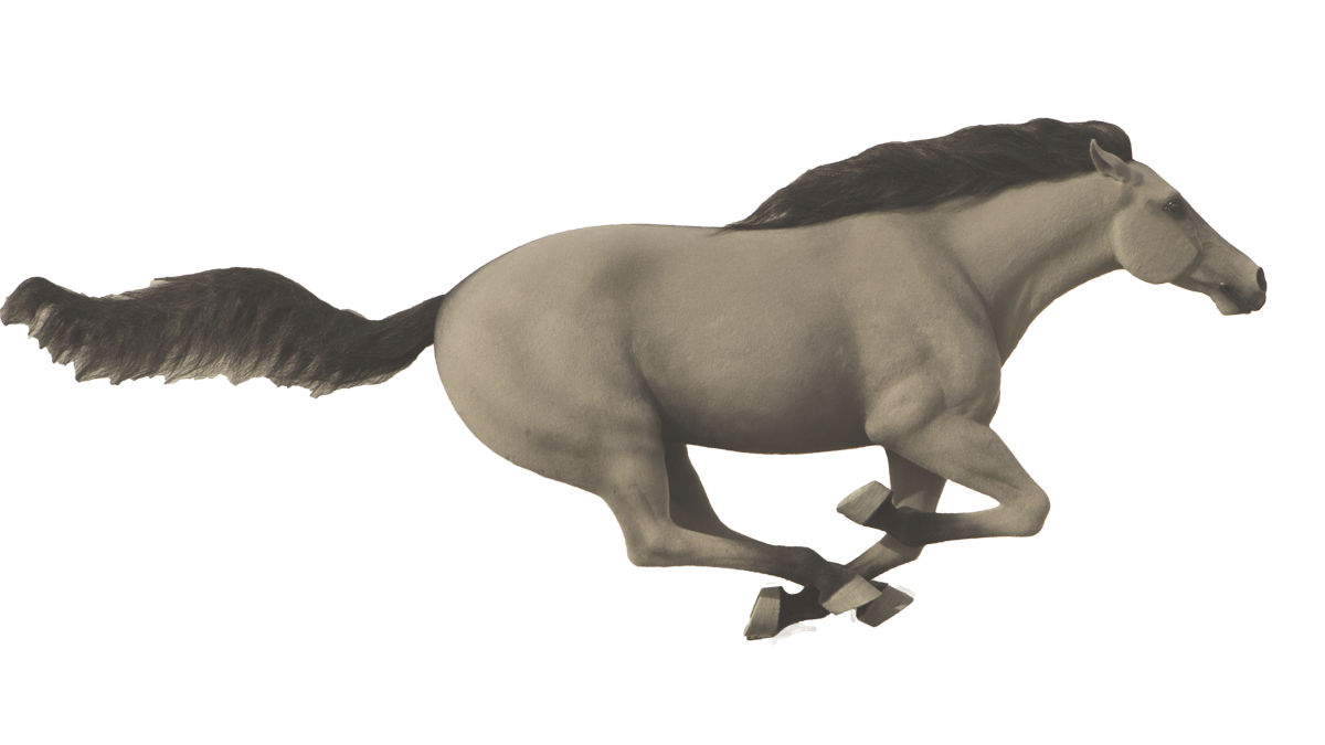 mustang-horse-16-9-1200.png